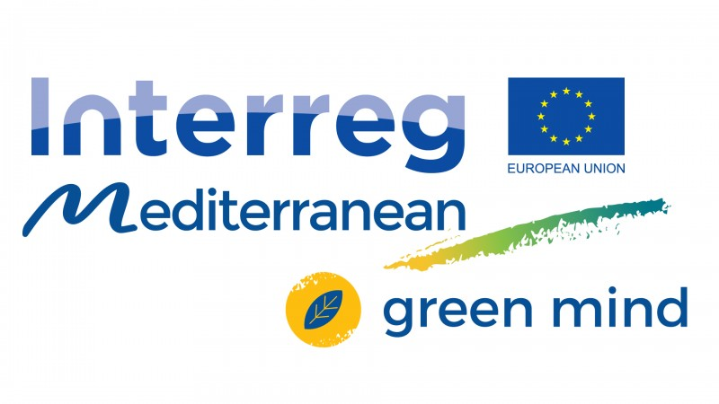 GREEN MIND - Pilot Testing Meetings with SMEs from Green and Smart Mobility Industry